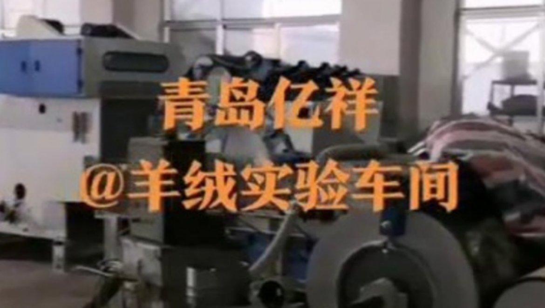 羊绒实验车间视频